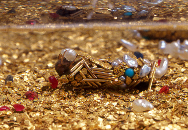 14096345822197 desktop 1406690559 When Biology And Art Come Together, the result is BLING bugs! MUST SEE!