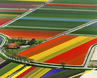 The Most Incredibly Colored Natural Landscapes