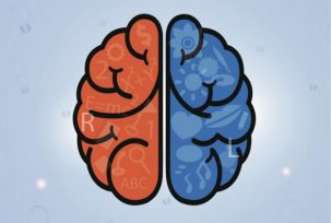 453466147 0 303x204 Do The Different Brain Hemispheres Really Define Your Personality?